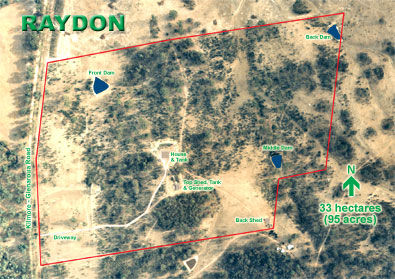 Raydon Aerial Photo